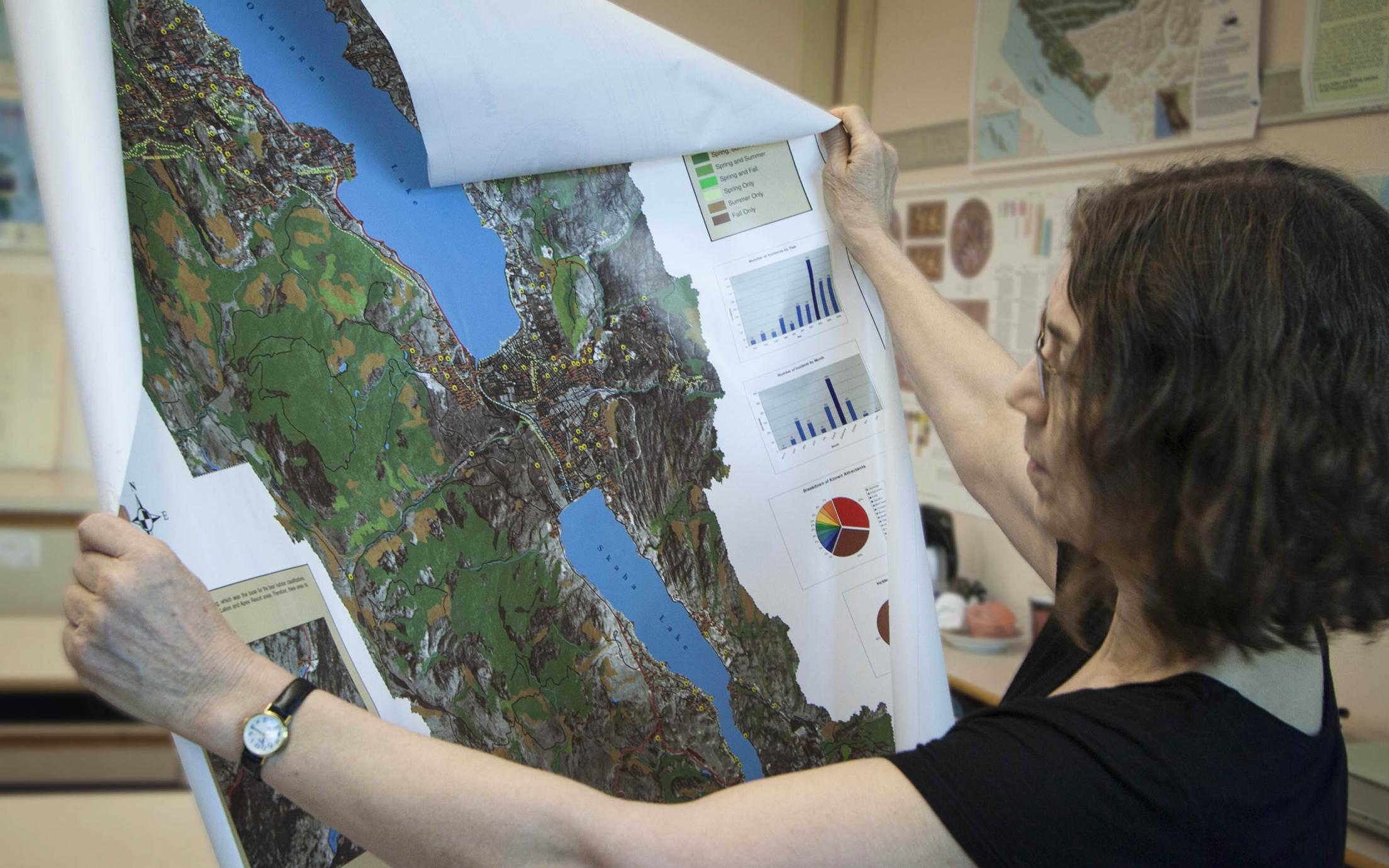 Geographic Information Systems Application student studying a map
