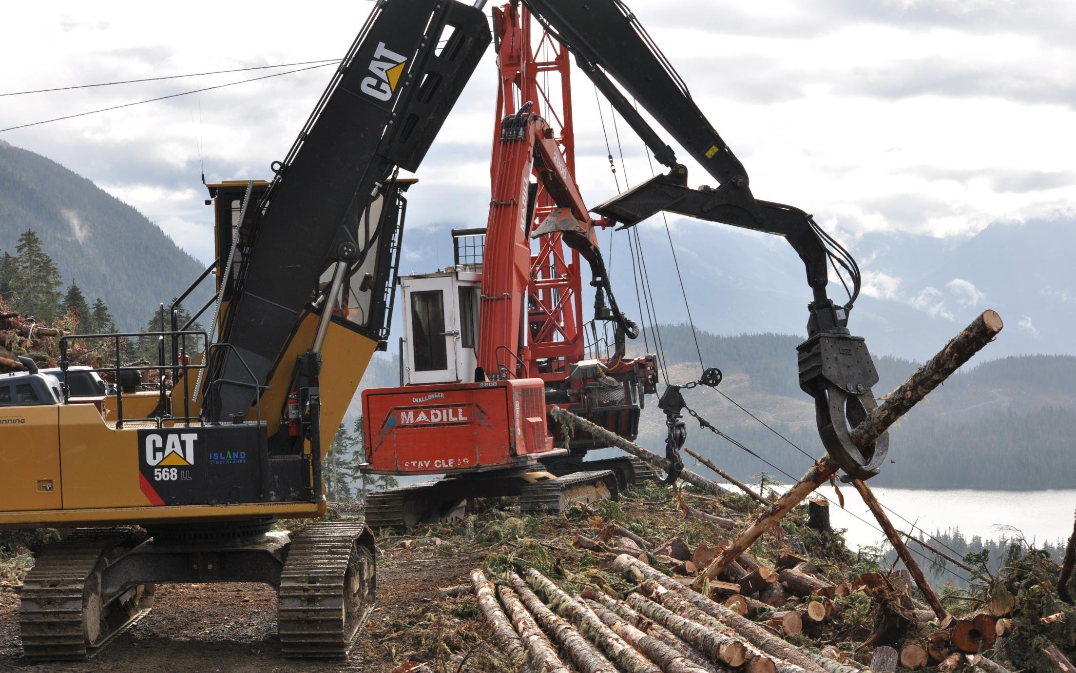 Fundamentals of Forest Harvesting Practices