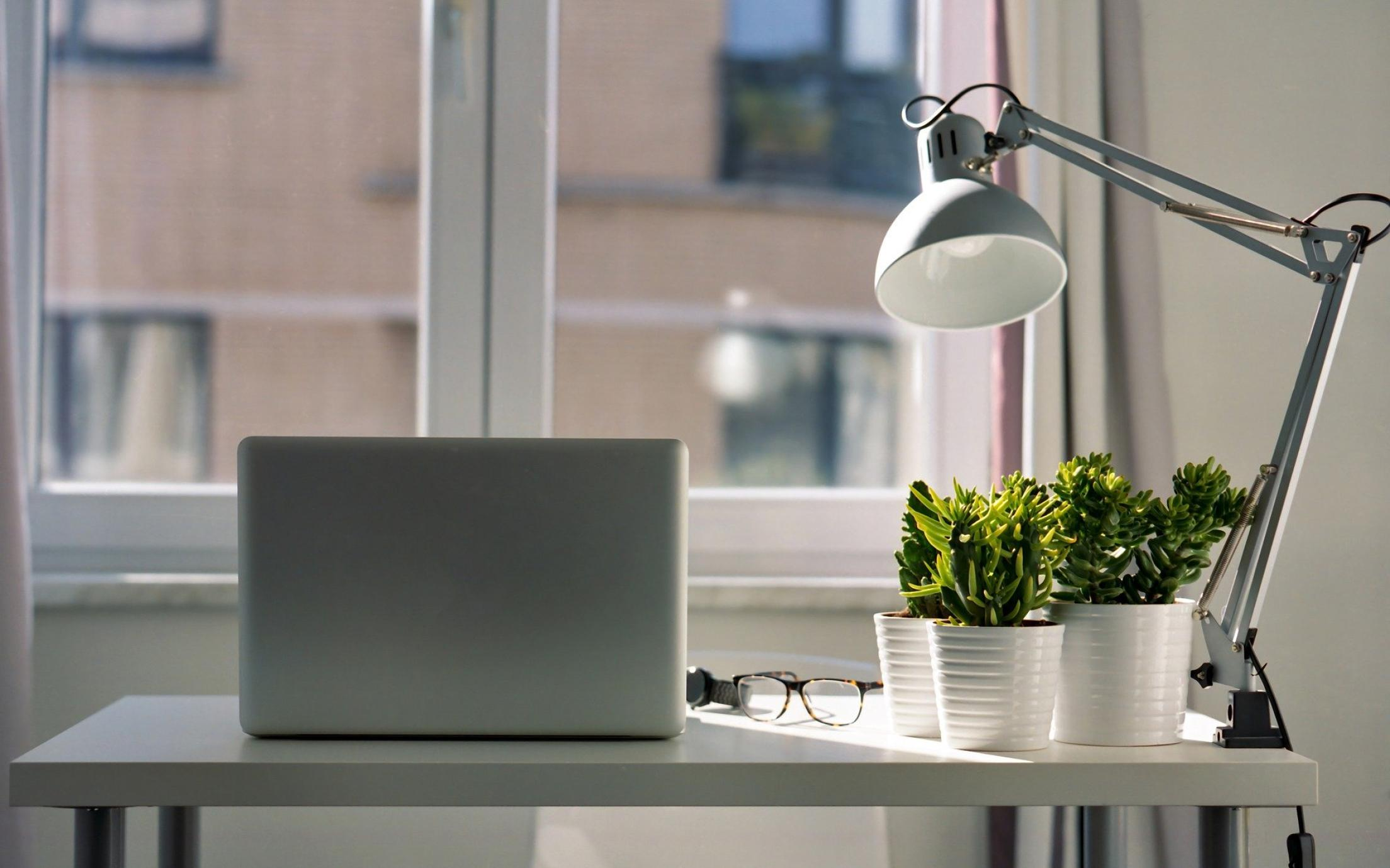 Photo of a desk with natural light coming in from a window and plants sitting on the desk