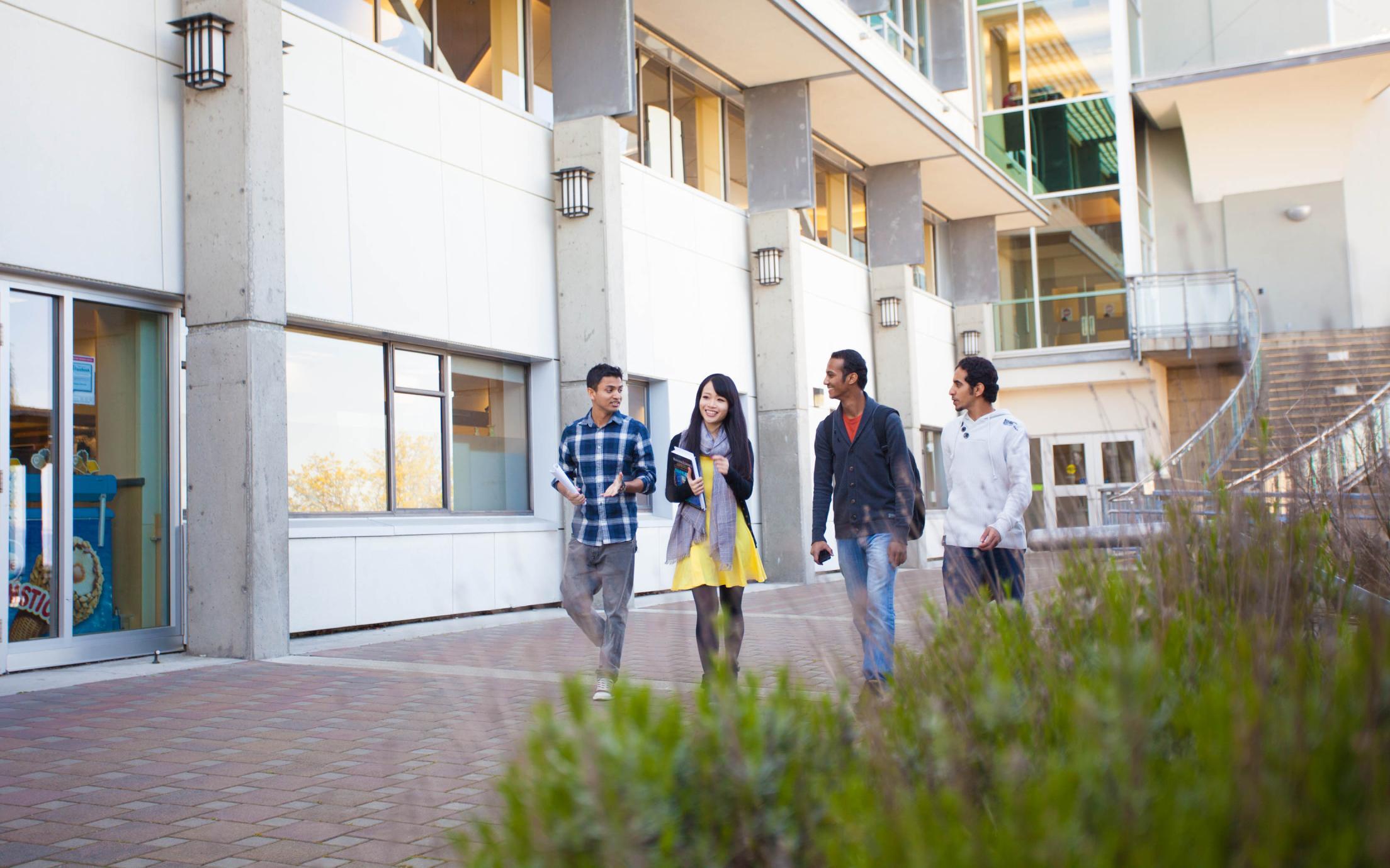 Post Degree Diploma In Business Studies Program Vancouver Island