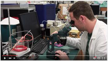 Video title image - Applied Environment Research Lab opportunities