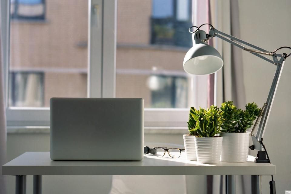 desk with plant